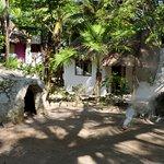 Dos Ceibas Eco Retreat Foto