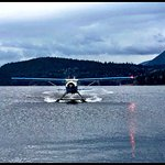 Precious cargo flying in from Nanaimo with attentive pilot Josh.