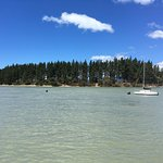 View of Rabbit Island from outside Jellyfish, on Mapua Wharf