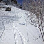 Local Ski Resort