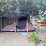 Kastanis Camping and Studios Photo