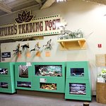 Nature's Trading Post