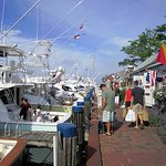 Shopping and Dining options near The Cottages at Nantucket Boat Basin
