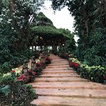Foto de Phu Chaisai Mountain Resort & Spa