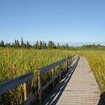 Ominik March Trail