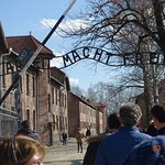 Photo of Krakow Trip - Auschwitz Tours