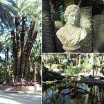 El Huerto del Cura, y especialmente la palmera Imperial, un regalo de la naturaleza que merece s