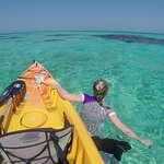 Some of the best snorkeling in the world, right from our beach or kayak