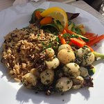 Small calamari dish with veges and wild rice