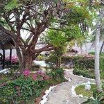 Dorado Cottage Foto