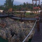 Территория и акватория
