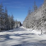 Road leading to resort.