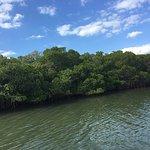 Foto di Caladesi Island State Park