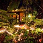 Beautiful Handmade Treehouse in the native Hawaiian Forest