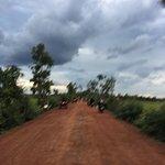 Foto di Quad Adventure Cambodia Siem Reap