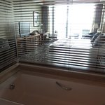 Separate bath with electronic blinds for privacy