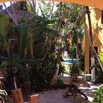 Photo of Playalingua del Caribe