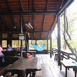 Photo of Nature Lodge