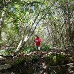 Views on our hike - my navigator