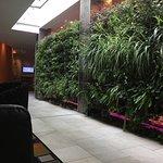 Hotel Verde Cape Town International Airport Foto