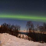 Foto de Explore the Arctic