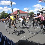 Annual Penny Farthing Race at Evandale