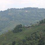 View from Darjeeling Rangit Valley Ropeway