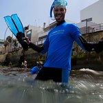 snorkeling in Las Canteras