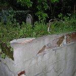 Particolari del cimitero