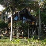 Photo of Art Jungle Eco Lodge