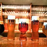 Gorilla Stout, Goldilocks Blonde, Hunter's IPA, Jackal Pale Ale, Summer Snow Champagne Ale
