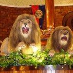 Lions roar inside