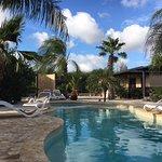Bridanda Apartments Bonaire Photo