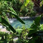 Photo de Lodge Roche Tamarin - Village nature
