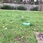 Plastic bottle left lying for nearly 4 weeks