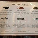Fish description placemat