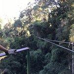 Tsitsikamma Canopy Tours Foto