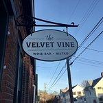 The Velvet Vine