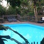 La piscine au milieu de la nature