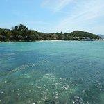 Photo of Whale Island Resort