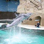 Zoo Duisburg Foto
