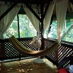 A hammock in the room.