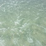 Foto de Coquina Beach