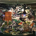 Photo of North Carolina Museum of Natural Sciences