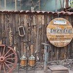 Traditional Wines at Vina Almendral