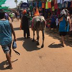 Anjuna market is a must we got boat from shinning star beach which charge for a couple 600 rupee
