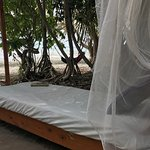 There are a couple of beds with mosquito nets around the property for reading or napping.