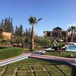 Photo du jardin, de la piscine et de l'annexe.