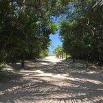 Photo of Beach Hotel Cambury