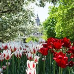 View of Parliament from Major's Hill Park - Ottawa Tourism
